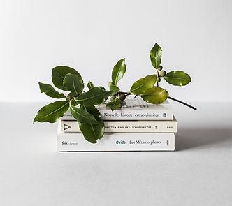 Books, Skin Health, Wellness, Dr. Mark Hyman, Plant-based