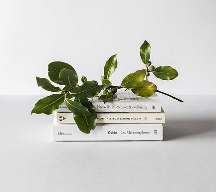 Uudet Kirjat / Käyttämättömät