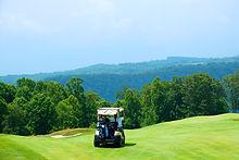 Golf Kart
