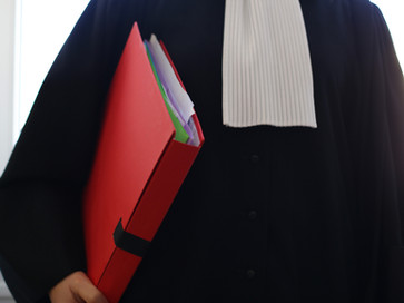 Ex Parte Orders made by Courts in Family Law Matter