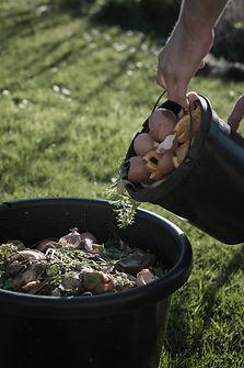 Compost organique
