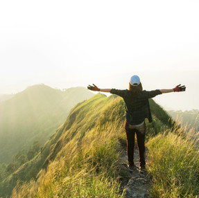 What is Nature-based Counseling?
