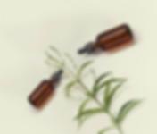 Bylinné oleje