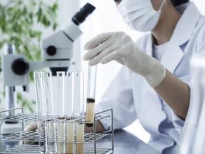 Influence of toxic substances on entomopathogenic fungi