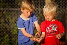 Boys Holding a Bird