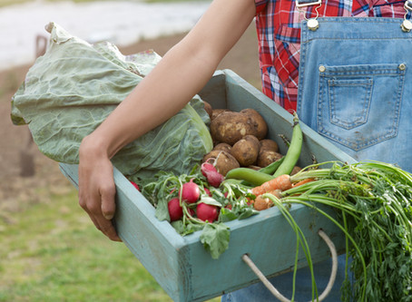 How To Save Money With A Garden