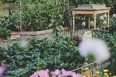fiches jardin