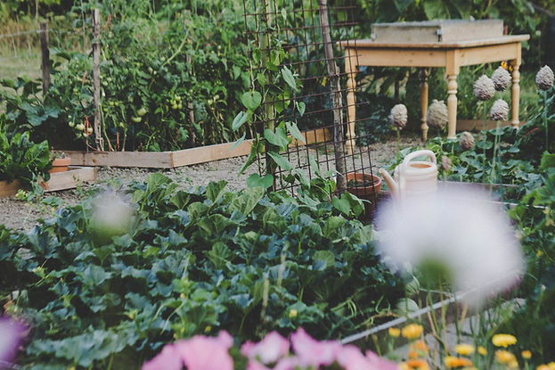 Permaculture Asheville