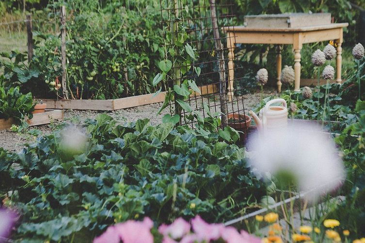 Gardens Of Eatin' Create Your Own Paradise