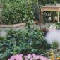 Neue Gartenbörse ist online