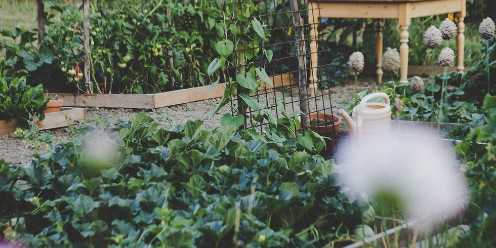 Vegetable Gardening Seminar