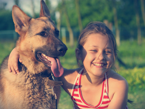 Keeping Kids and Dogs Safe