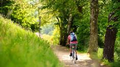 OLG Hamm, 11.11.2020 - 11 U 126/20: Radfahrer muss auf Wirtschaftsweg mit Unebenheiten rechnen