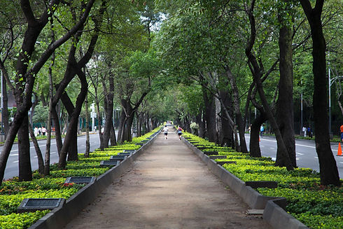 Pintorescas escenas del parque