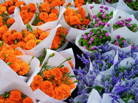 9 טיפים לסידור פרחים ממקצוען פרחים