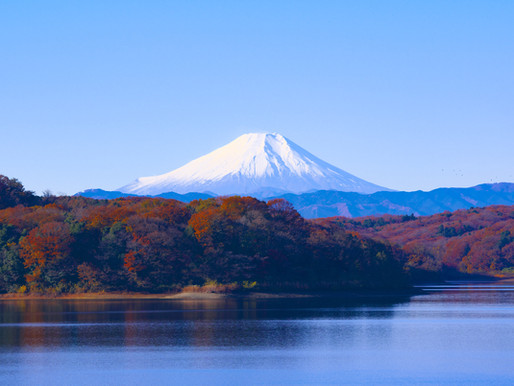 What regions produce Japanese Wine?