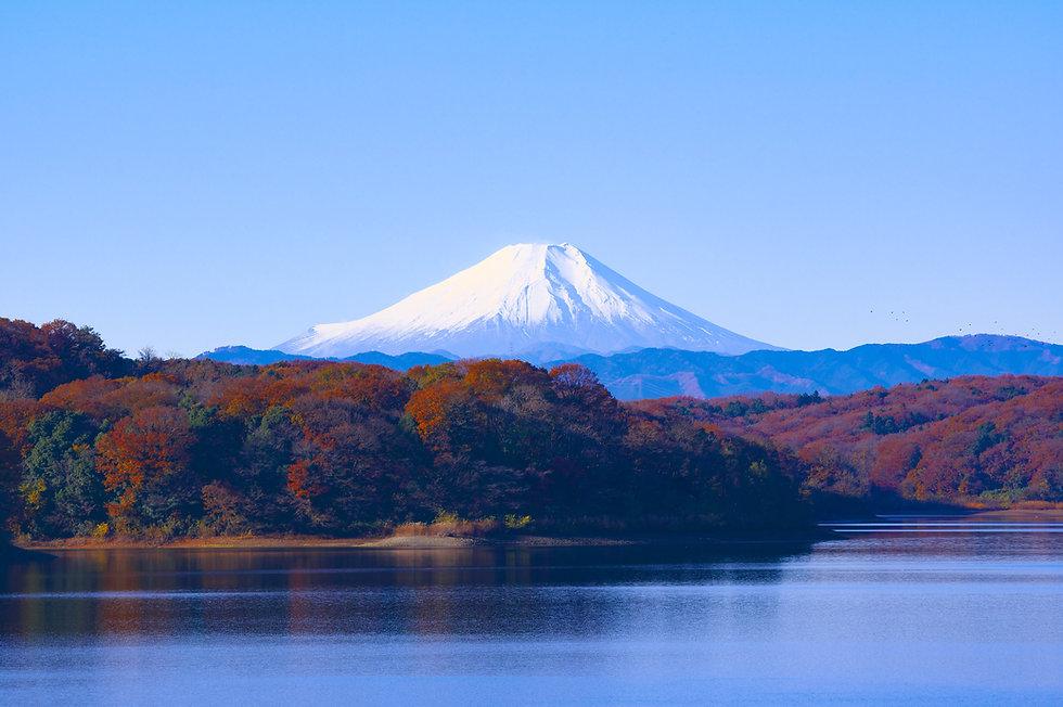 Der Fujisan im Herbst