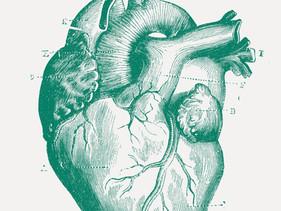 Het hart verbeteren met de brandstof van je lichaam