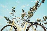 노란 자전거