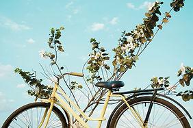 Vélo jaune