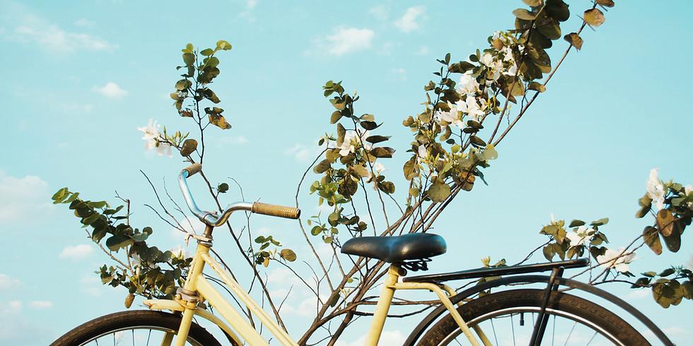 Radtour durch die Heide