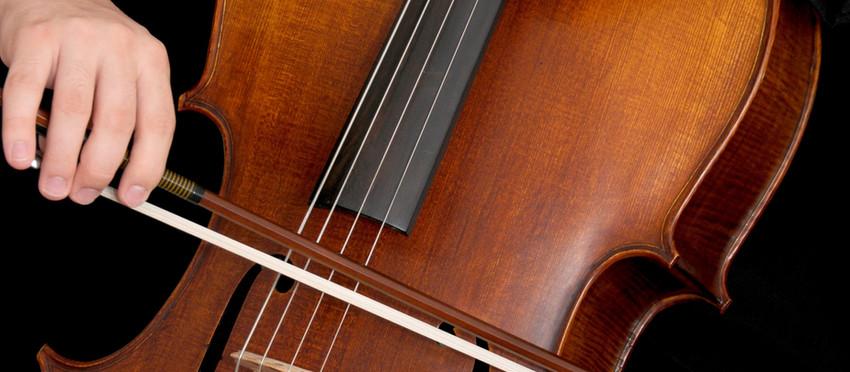 Cello Instructors