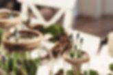 Gläser mit Pflanzen