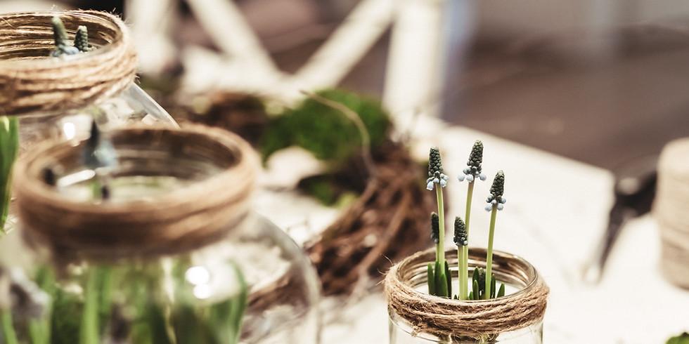 DIY: Growing Sprouts in a Mason Jar