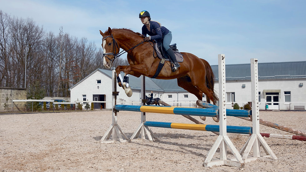 Class Twenty Eight - Freestyle Jumping (70cm and below)