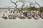 Yucatan Penninsula