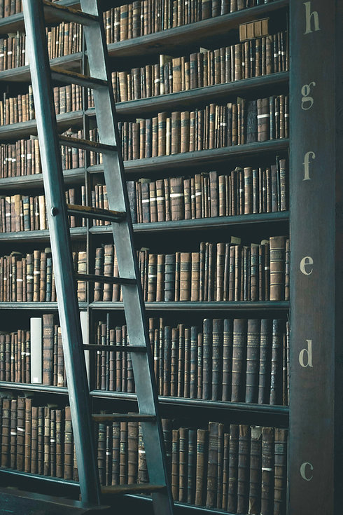 Bibliotheksregale
