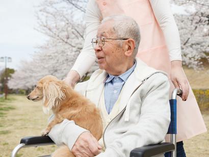 病後の医療ー訪問介護と訪問看護の違い