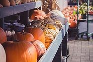 Pumpkin Stand