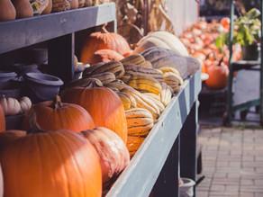 Zero Waste Halloween: 5 Ways to Be Sustainable and Skip the Trash