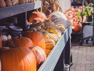 Where To: Pumpkin Patches and more!