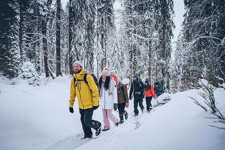 winter, snow, hiking, snowshoe