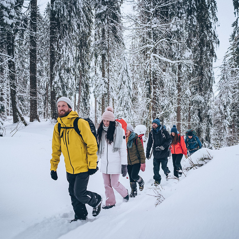 Free Workshop! Winter Walk: Cold is the new cool!