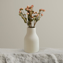 Dry Roses in Vase