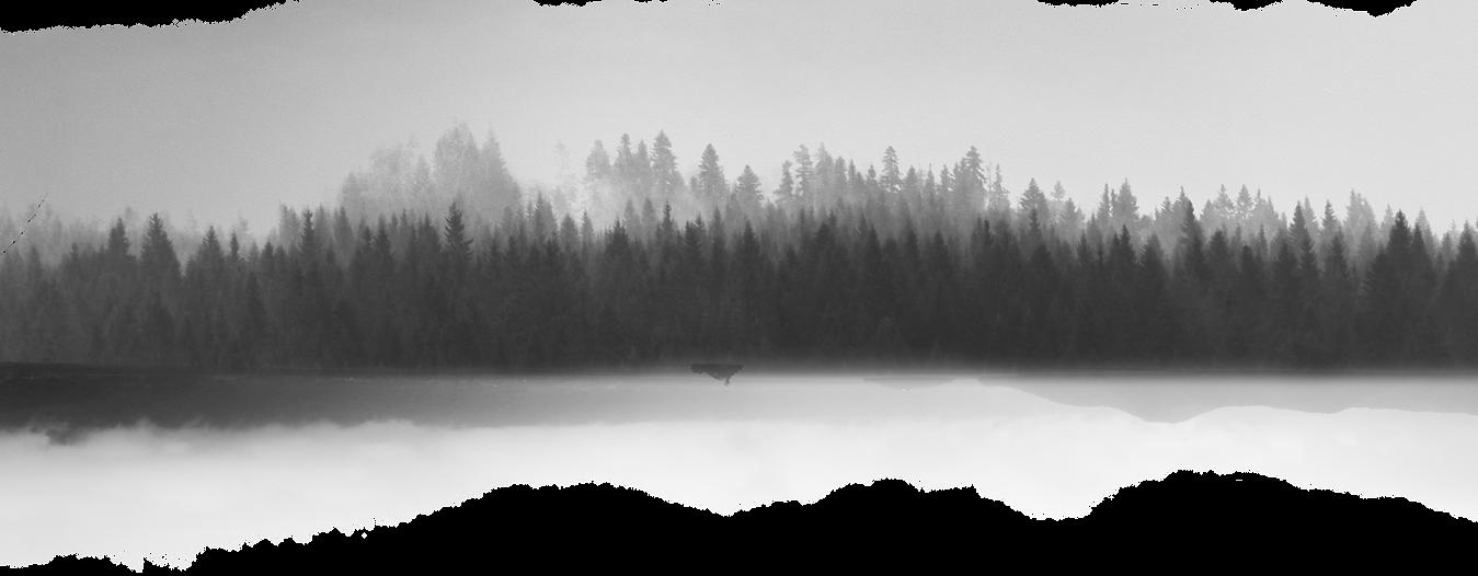 Paysage en niveaux de gris