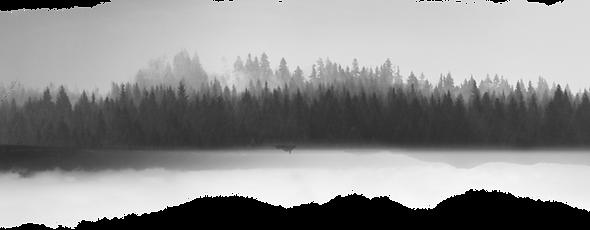 Gri Tonlamalı Manzara