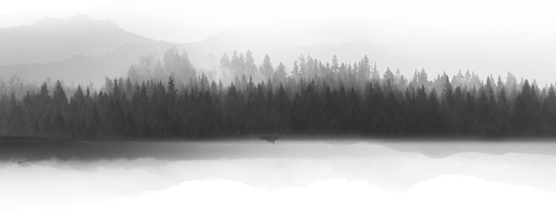 Paisaje en escala de grises