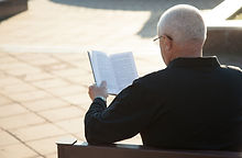 A Man Reading a Book Outdoors