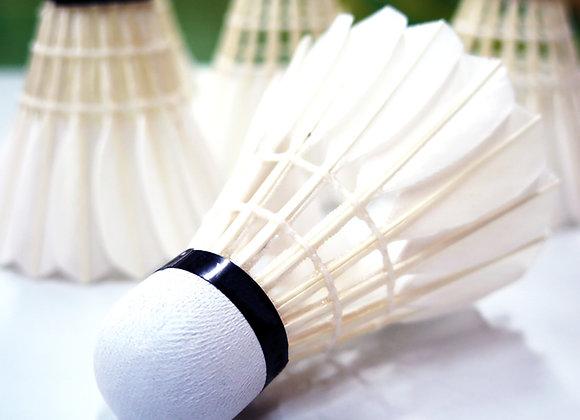 10-er Karte Badminton (Nebenzeit)