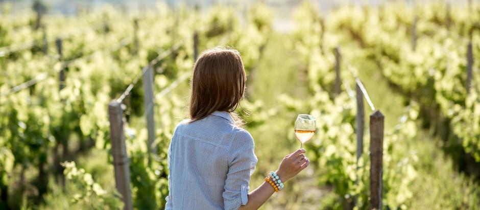 Wine Buying Guide of Top North American Wine Regions
