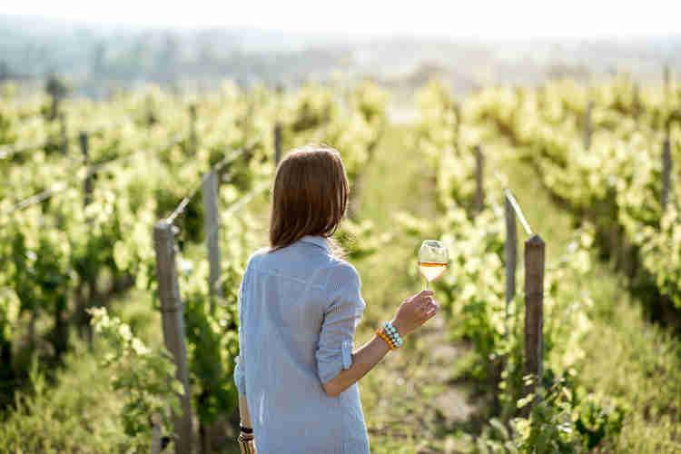 What to Drink on International Sauvignon Blanc Day