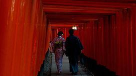 Marcher dans le torii