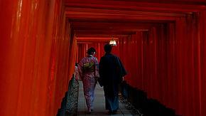 Walking through the torii