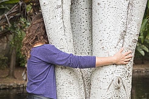 Hugger d'arbre