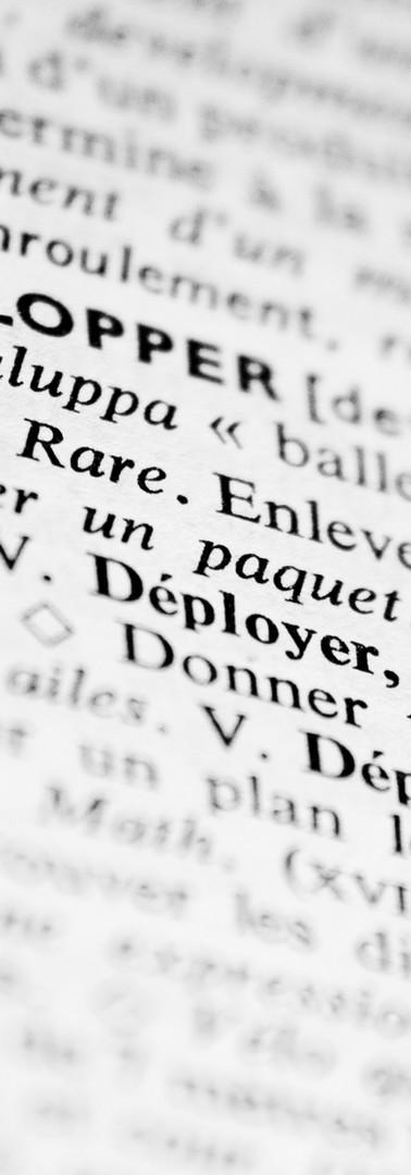 フランス語辞典