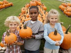 Fall for Pumpkin and Squash